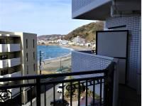 神奈川県横須賀市秋谷1丁目のマンション
