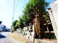 神奈川県藤沢市鵠沼桜が岡4丁目の土地