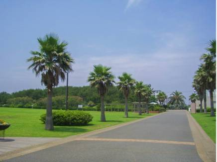 辻堂海浜公園まで徒歩18分(約1.5km)