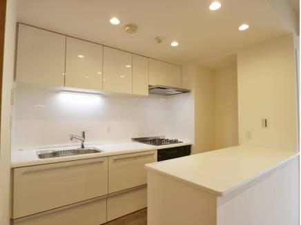 ワイドに広いキッチンスペースは広く活用できそうです!
