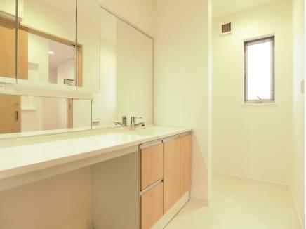 ワイドな洗面に収納スペースも確保された洗面