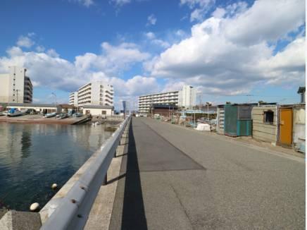 目の前の漁港の道路です