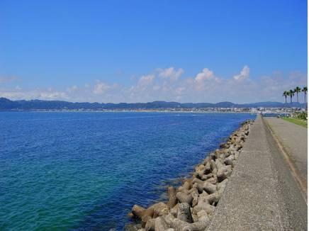 綺麗な海を眺めながらお散歩を楽しめます