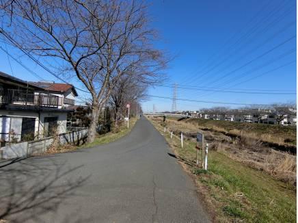 東側桜並木の遊歩道、お散歩コースとしても良いですね♪