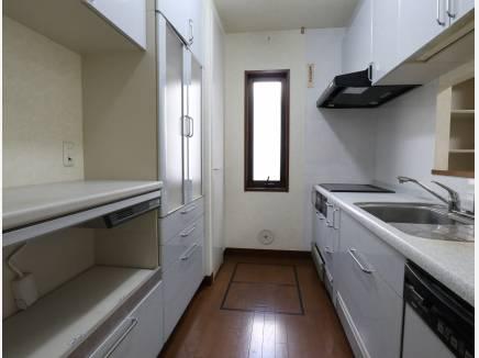 1Fキッチンは収納豊富で嬉しい食洗機付き
