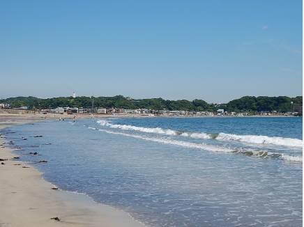 9分も歩けば、砂浜も広がります