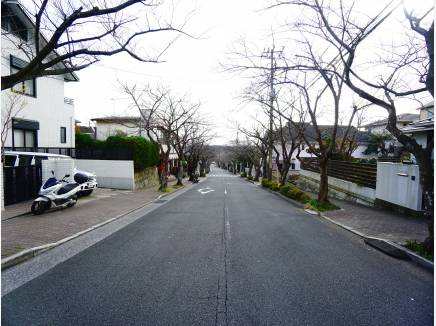 前面道路。