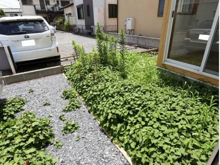 カースペースとお庭もございます。