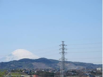 この日は富士山も綺麗に見えました