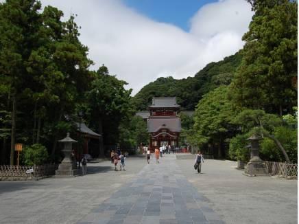 鶴岡八幡宮がお散歩コース(入り口まで約210m)