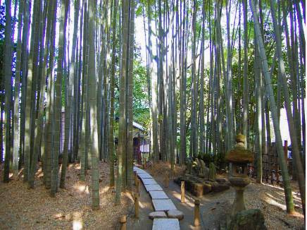竹林で知られる報国寺まで約850m