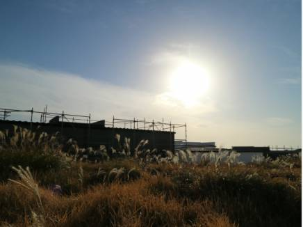 佐島の丘というゆとりあるロケーションを崩さないファサード