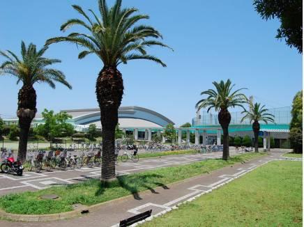 鵠沼運動公園 約800M