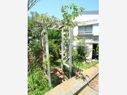 階段を伝い庭へ降りられます。