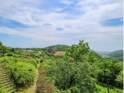 海と空と緑のある湘南国際村をお楽しみください。