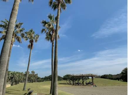 広々とした「辻堂海浜公園」も歩いて15分(約1.2km)