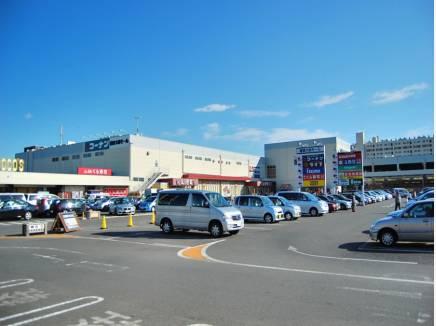 コーナン鎌倉大船モールまで徒歩約14分(約1440M)