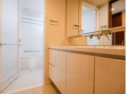 広々とした洗面化粧台とバスルーム