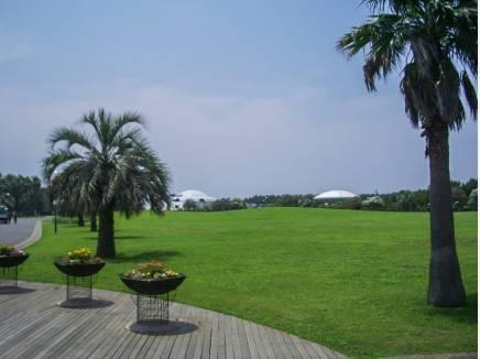 辻堂海浜公園まで約1km