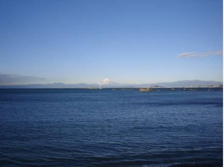 佐島エリアの海の景色物件より約700mの場所より撮影