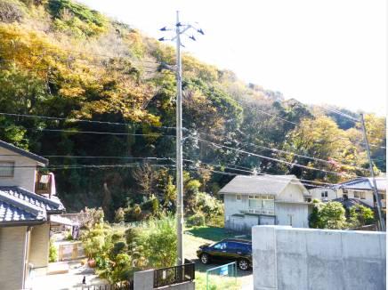 greenな景色を自宅から(宅地1階レベル眺望)