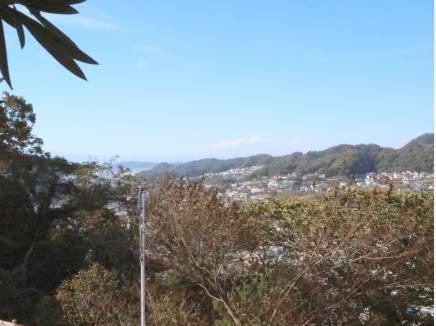 逗子、鎌倉方面の海を望む