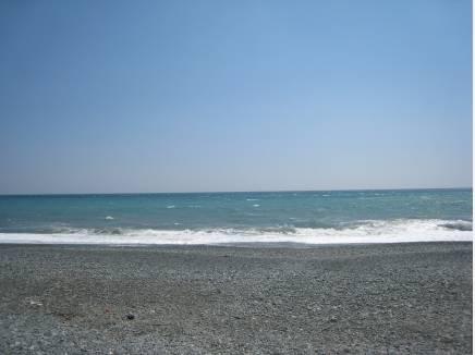 二宮の海岸を満喫できます。