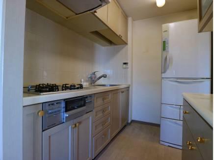 キッチンスペース。お好みの物へ入替えてみては?