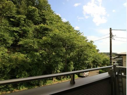 道路の向かいは鎌倉の緑。癒されますねぇ。