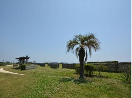 湘南海岸公園 約200M
