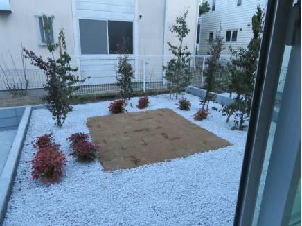 LDKの前の庭。センターに芝生が張られてます。