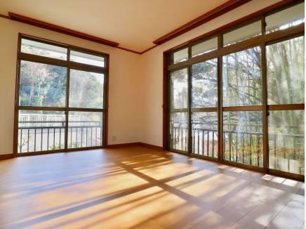 2階には竹林を望む洋間が。木漏れ日が心を癒します。