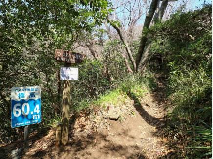 『つつじハイキングコース』徒歩9分(約700m)