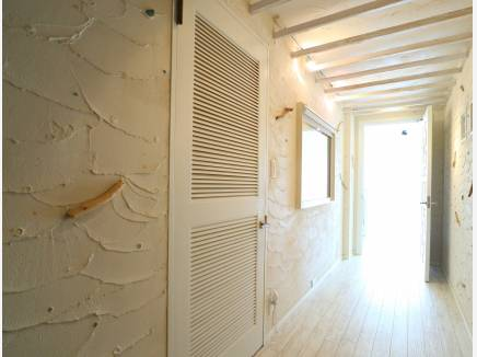 貝殻や流木が壁に♪
