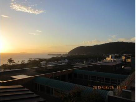 相模湾を見下ろす景色。