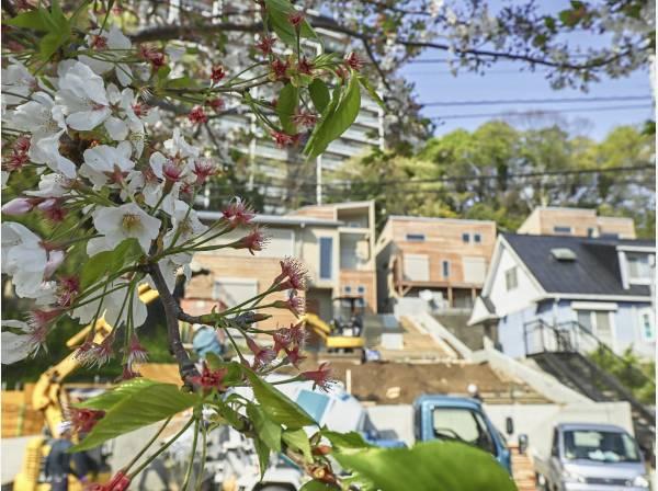 神奈川県藤沢市大鋸2丁目の新築戸建