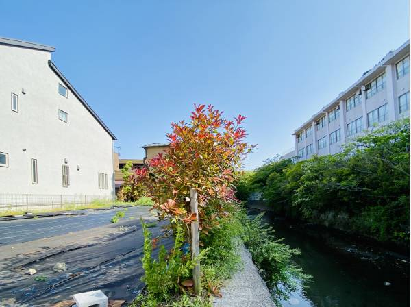 神奈川県鎌倉市材木座1丁目の土地