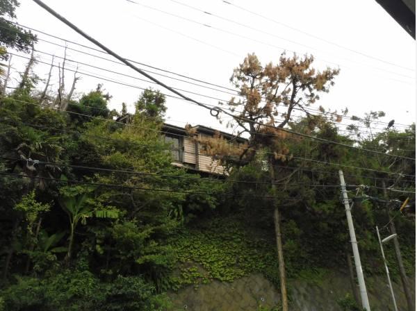 神奈川県鎌倉市稲村ガ崎3丁目の土地