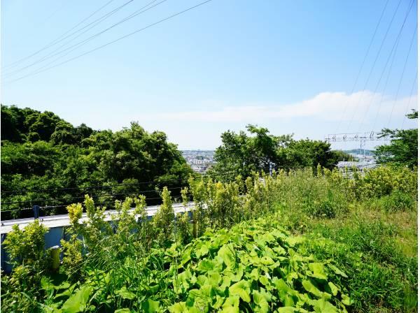 神奈川県鎌倉市鎌倉山4丁目の土地