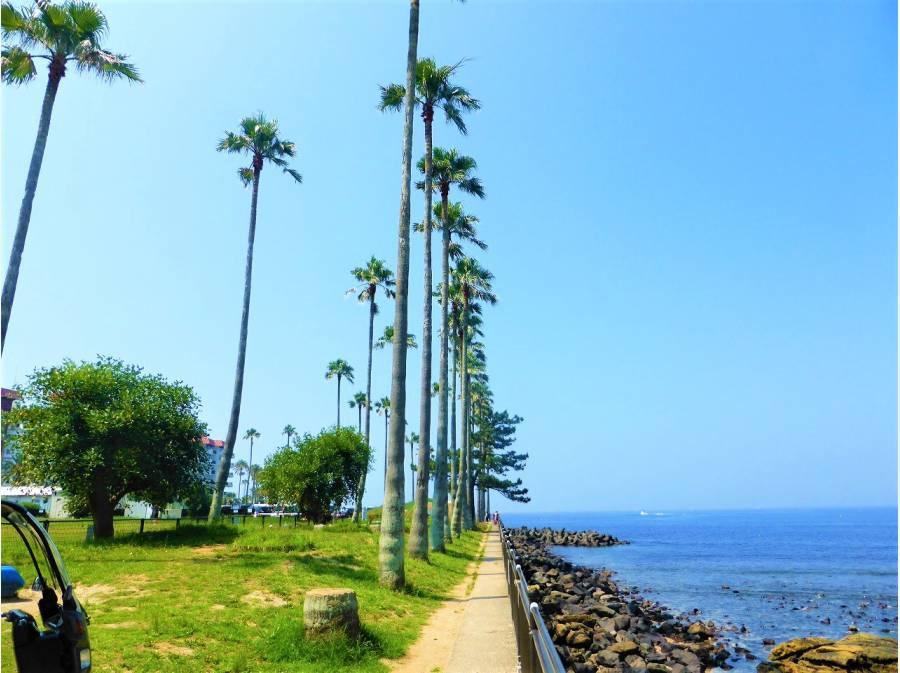 小坪飯島公園もありますのでお子様と♪徒歩1分(約70m)