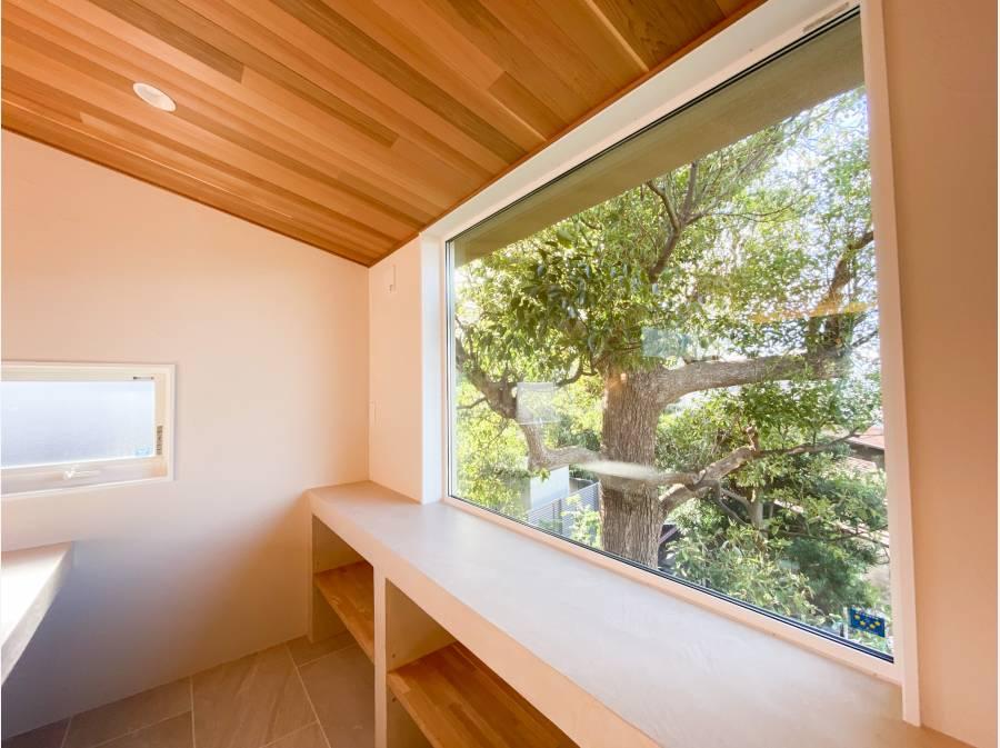 松の木を眺めることのできるライブラリスペース。