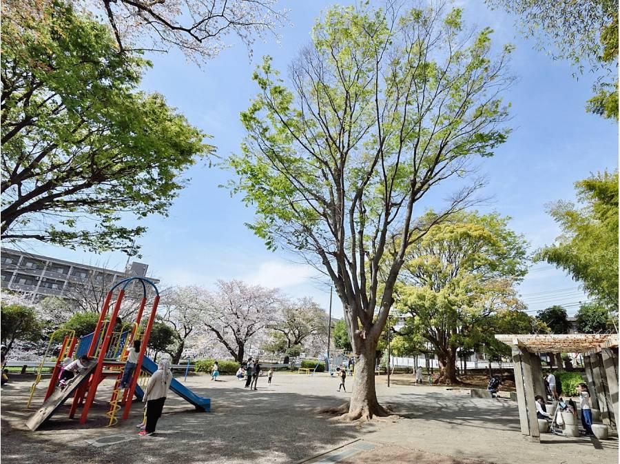 円業公園まで徒歩3分(約180m)