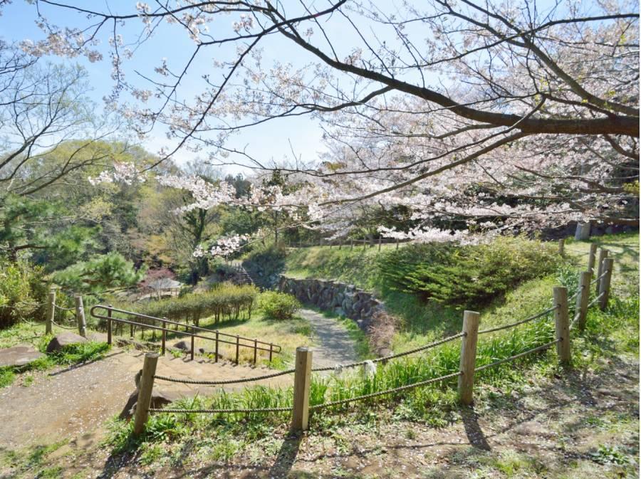 鎌倉中央公園まで約290m