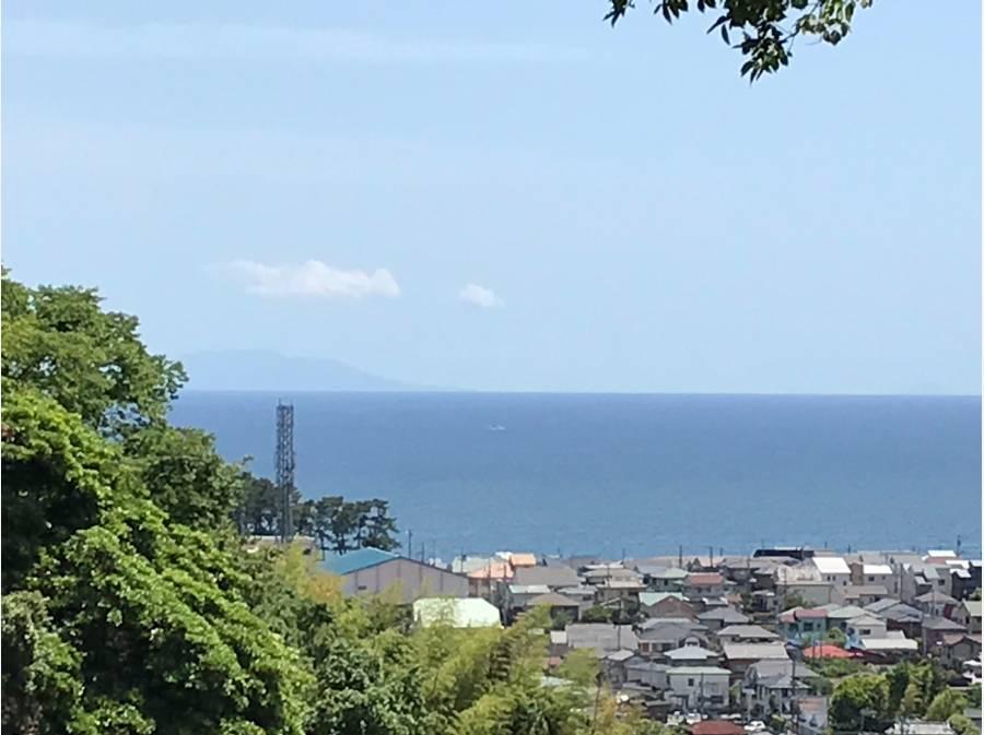 左奥に見えるのが大島です。