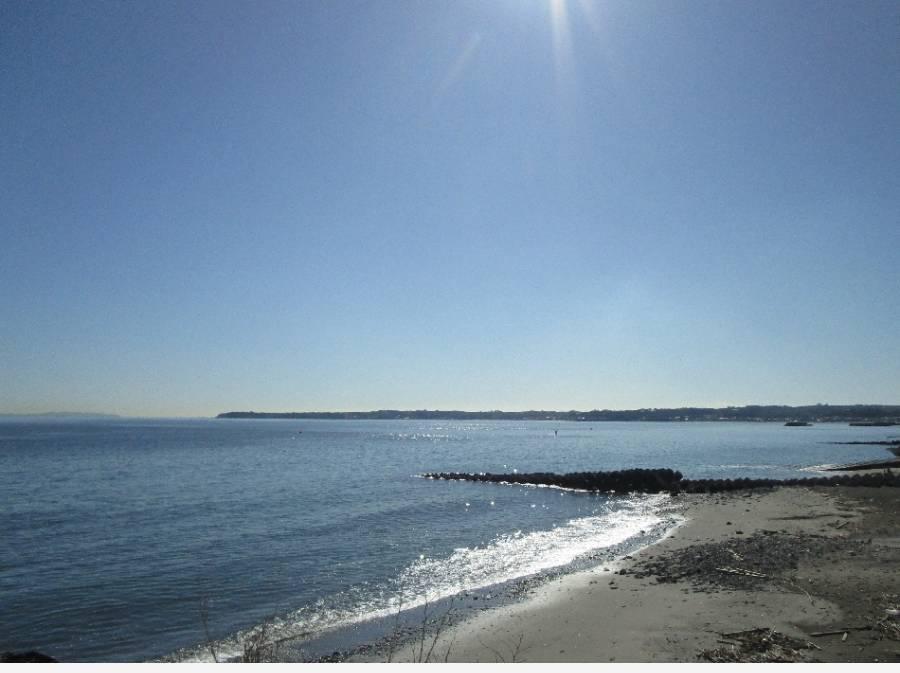 道路向かいの砂浜(約50m)