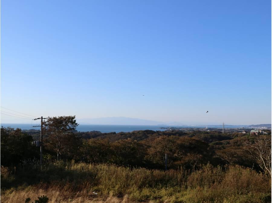 海、富士山、伊豆半島を遠望できます。