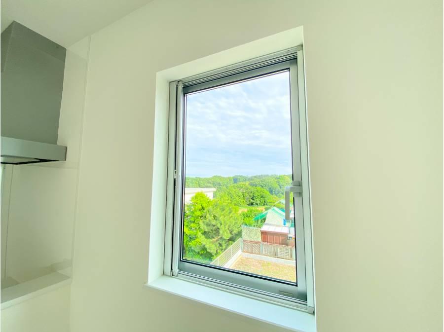 窓からは緑を望みます