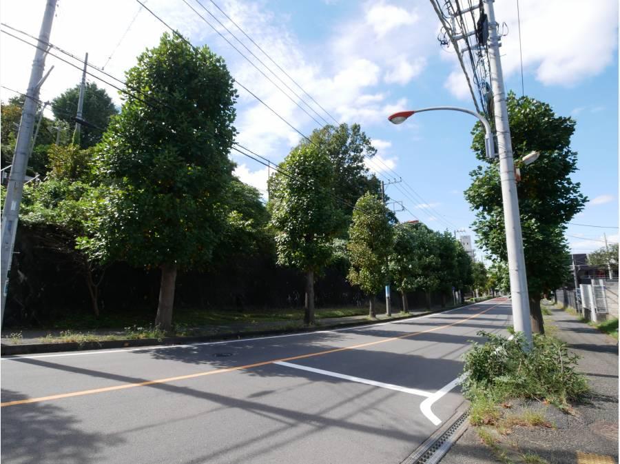 広々とした街区、道路も魅力の大型分譲地