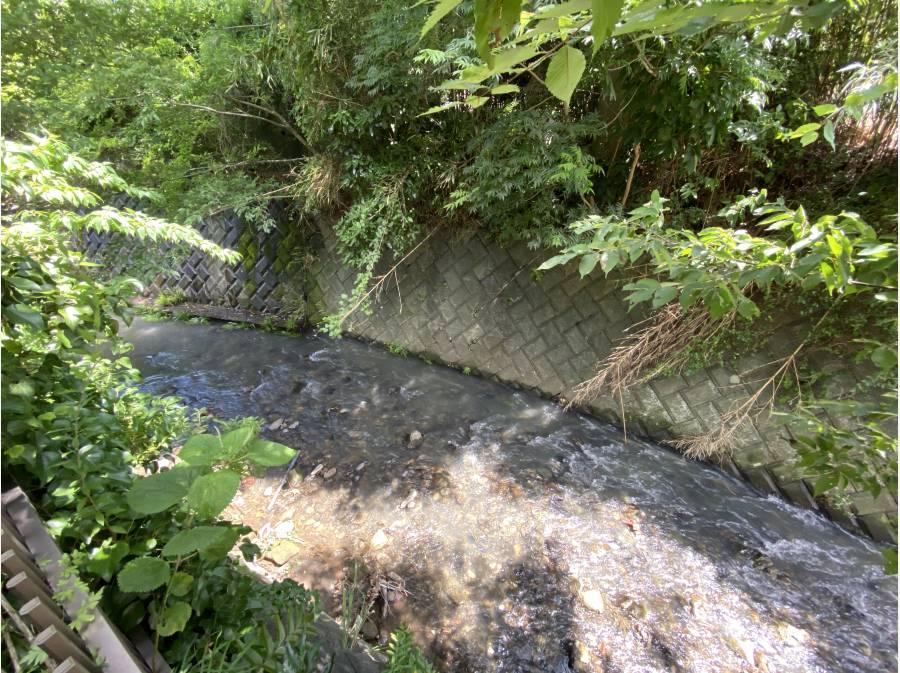 敷地南側に隣接する滑川。風情ある景色が暮らしに豊かさを加えてくれます