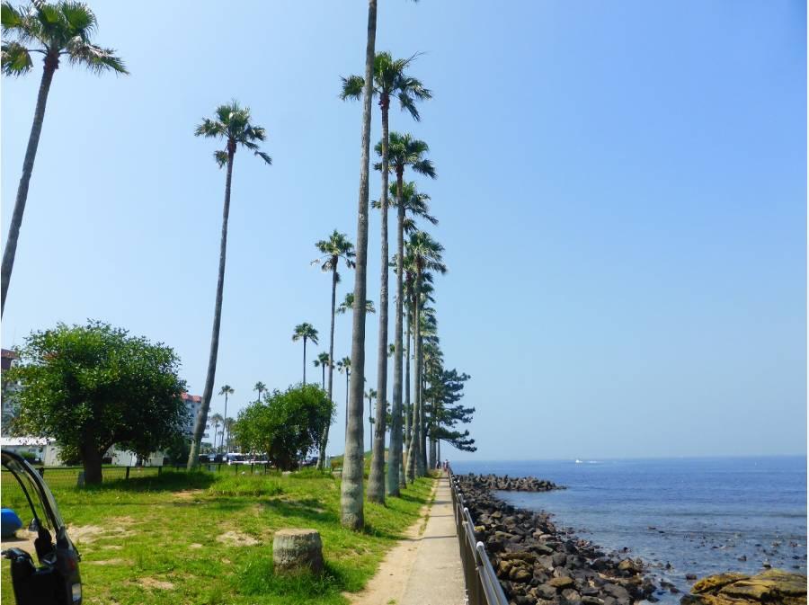 逗子市小坪飯島公園まで徒歩1分(約30m)